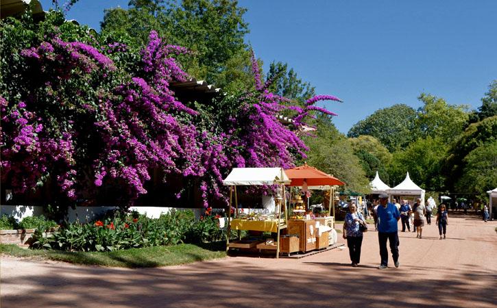 Food Tour em Caldas da Rainha, GoPeniche Guia Turístico Local